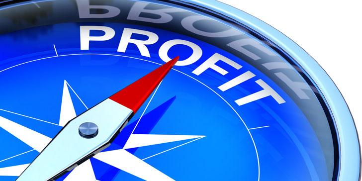 Sources of profit compass