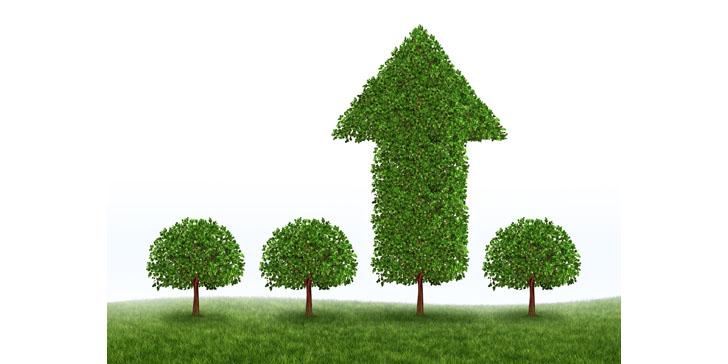 Marketing ROI Growth